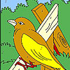 Bird and spring coloring game