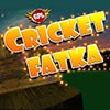 Cricket Fatka game