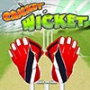 Cricket WIcket game