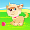 Cute Puppy Dressup game