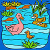 Funny duck family in the lake coloring game