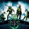 Ninja Turtles Hidden Stars game