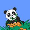 Panda Adventure game