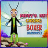 Peppys Pet Caring - Boxer Dragonfly game