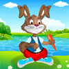 Rabbit Dress up game