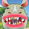 Rhino Tooth Problems game