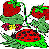 Strawberry garden coloring game