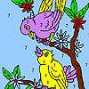 Sweet neighboring birds coloring game