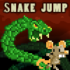 the Snake Jump game