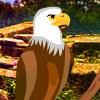 Yal Owl Sanctuary Escape game